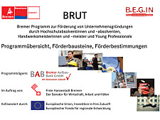 BRUT overview